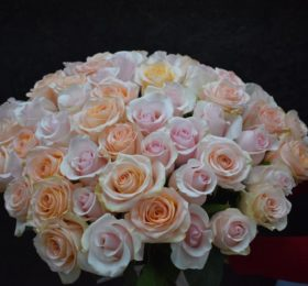 51 роза (NEW)