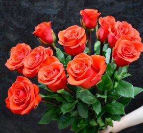 Букет 11 Роз на ленте ( 70 см )
