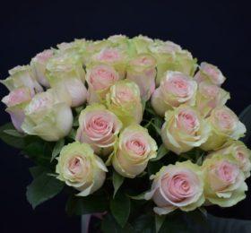 Букет 25 роз на ленте