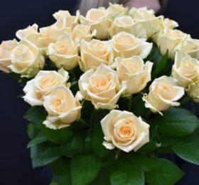 Букет 25 Роз (нежный персик)