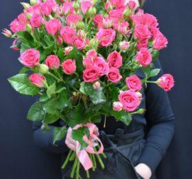 Букет из 15 кустовых роз ( фуксия )